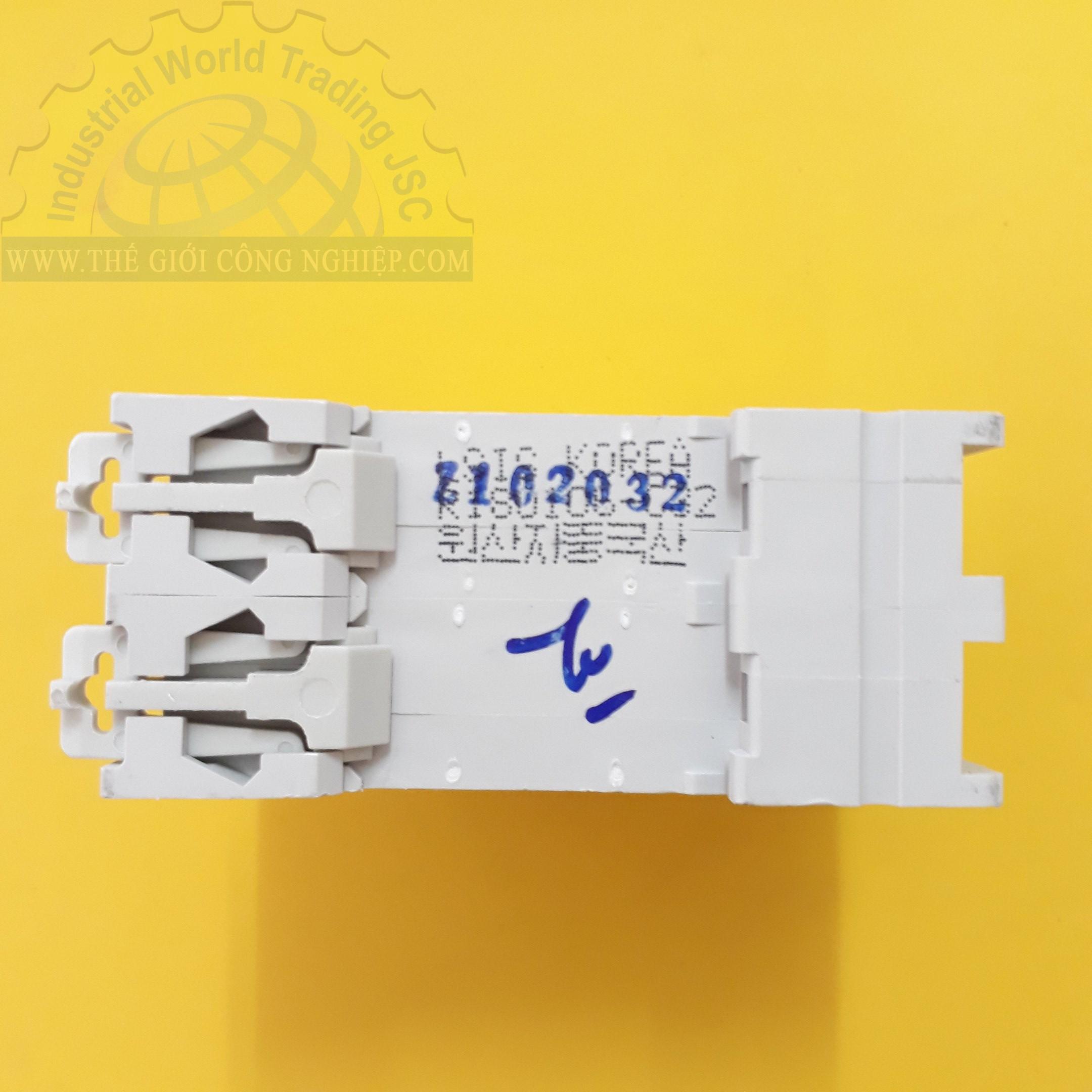 MCB ( gắn trên ray ) loại 2 cực cB tép 2 pha BKN 2P-32A LS