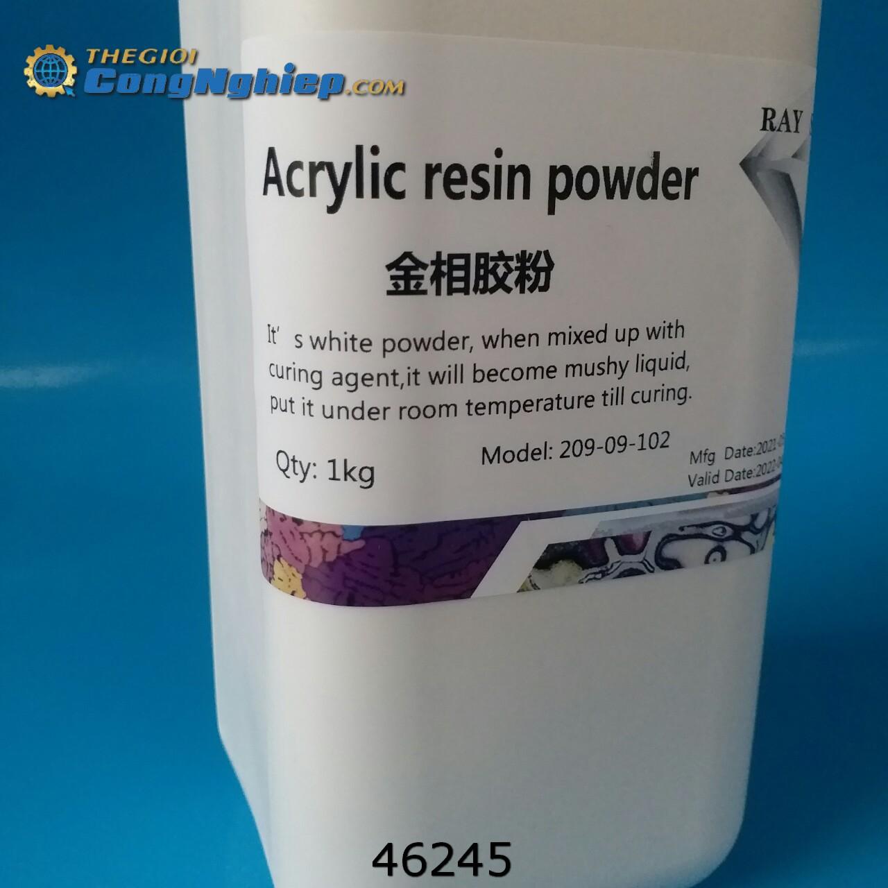 Bột đúc mẫu nguội màu trắng Acrylic 1Kg  209-09-102 Ray Shine