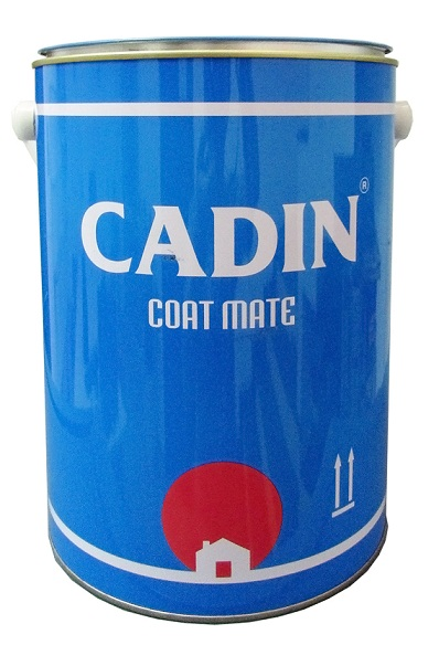 Dung môi pha sơn H101 CADIN