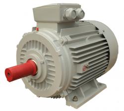 Motor động cơ điện ENERTECH ESC ENERTECH