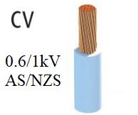 Dây điện lực hạ thế  CV
