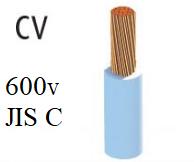 Dây điện lực hạ thế  CV ( 600v )